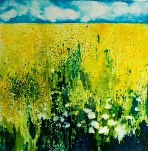Canola Field by Theo